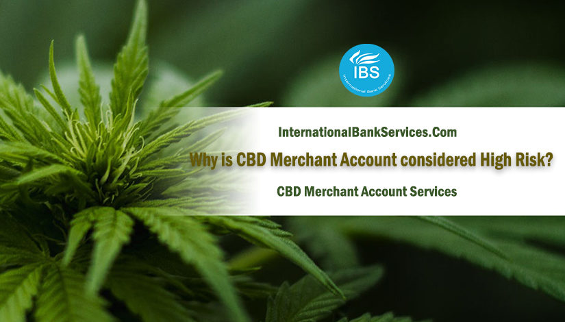 Why is CBD Merchant Account considered High Risk?
